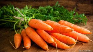 20 Macam Macam Sayuran dan Khasiatnya Wortel