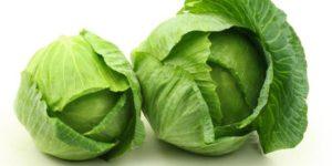 20 Macam Macam Sayuran dan Khasiatnya kubis