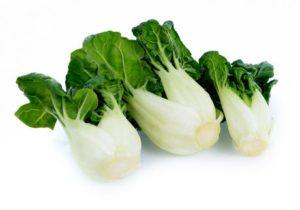 20 Macam Macam Sayuran dan Khasiatnya pak choy