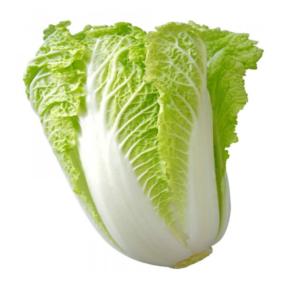 20 Macam Macam Sayuran dan Khasiatnya sawi